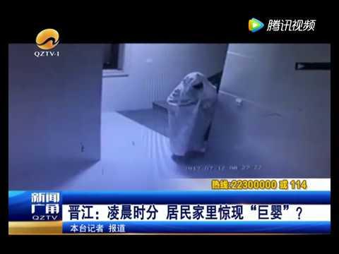 オバケに成りきるも御用に(画像は『Multi Media 2017年7月25日公開 YouTube「Burglar Disguises Himself as a Ghost to Make it Past Security Camera, Gets Caught Anyway」』のサムネイル)