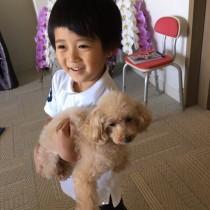 【エンタがビタミン♪】麻央さん実家の愛犬を迎えた市川海老蔵ファミリー 勸玄くんも嬉しそう