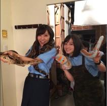 【エンタがビタミン♪】橋本環奈と石川恋 ヘビと戯れる姿に「本物?」「怖くない?」の声