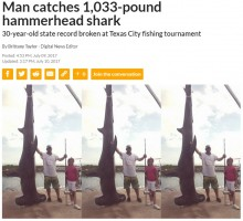 【海外発!Breaking News】468kgのシュモクザメを釣った男性 引き揚げに3時間(米)