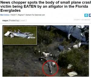 【海外発!Breaking News】沼地に墜落した小型飛行機 振り落とされたパイロットはワニの餌に(米)