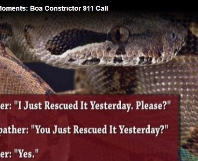 【海外発!Breaking News】「170センチのヘビが身体に巻き付いて離れない!」緊急コールで助けを求めた女性(米)