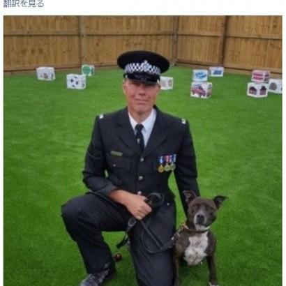 【海外発!Breaking News】飼い主に捨てられた犬、今は立派な爆発物探知犬に(英)