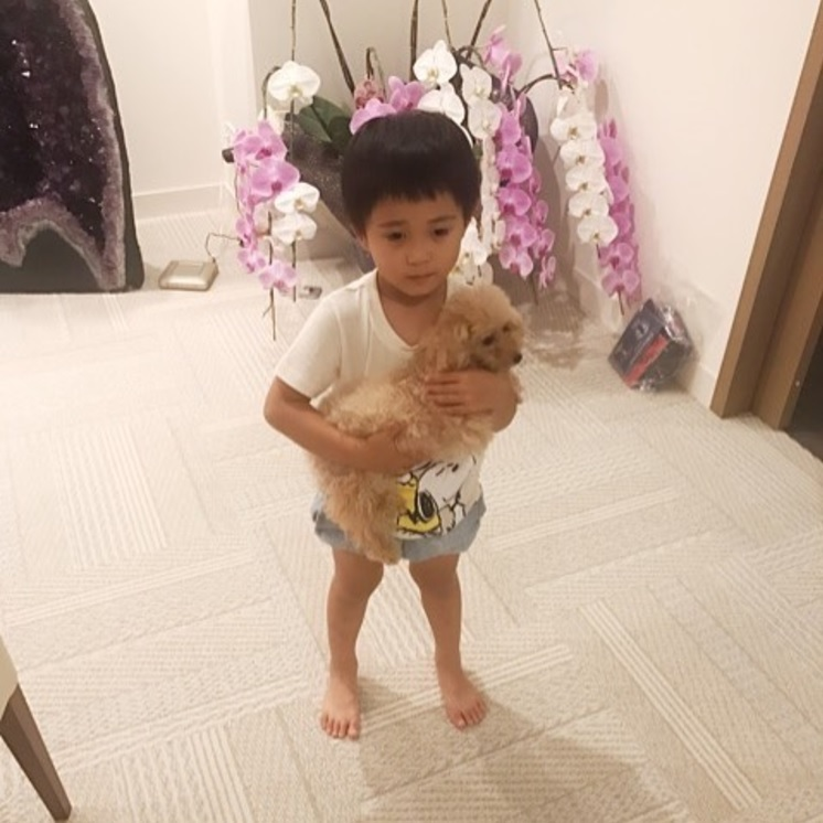 1週間ぶりに父親に会った勸玄くん(画像は『Ebizo Ichikawa 十一代目 市川海老蔵 2017年8月8日付Instagram「Played around with kids for quite a while last night. LOL」』のスクリーンショット)