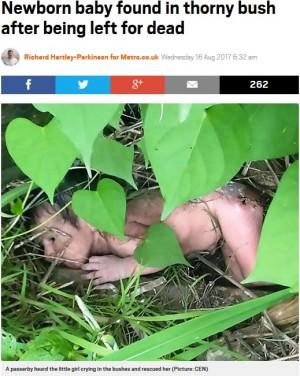 【海外発!Breaking News】両親に捨てられた女の赤ちゃん、茂みの中で見つかる(印)