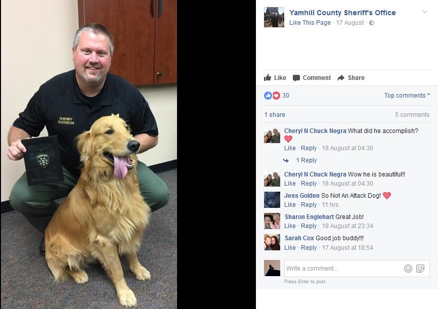 ヘロインを掘り当てた飼い犬に表彰状(画像は『Yamhill County Sheriff's Office 2017年8月17日付Facebook「Golden Retriever Named Honorary Narcotics K-9」』のスクリーンショット)
