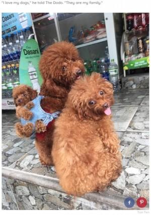 【海外発!Breaking News】親が子犬を背負うバックパックが可愛いすぎる お出かけにも便利(ベトナム)