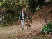 【イタすぎるセレブ達・番外編】『ビーグル犬 シャイロ』の子役 ブレーク・ハーロンが35歳で急逝