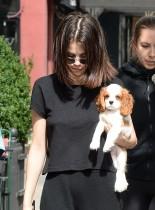 【イタすぎるセレブ達】セレーナ・ゴメス、飼い始めた子犬とNYロケではいつも一緒