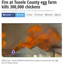 【海外発!Breaking News】ニワトリ30万羽が死亡 米・ユタ州の養鶏場で大規模火災