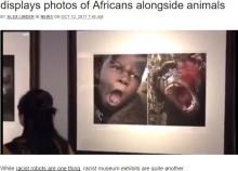 【海外発!Breaking News】アフリカ人を動物と並べて展示 中国の博物館で「人種差別」と物議<動画あり>