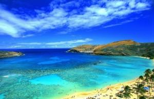 「青天のハワイツアー」のイメージ