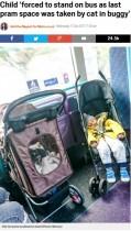 【海外発!Breaking News】バギーに乗った猫がバス内のベビーカースペースを占領 怒りの母に反論続出(英)