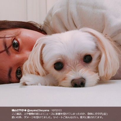 【エンタがビタミン♪】磯山さやか、ダメージで放心状態? 愛犬と過ごす姿に「思いっきり癒されてね」