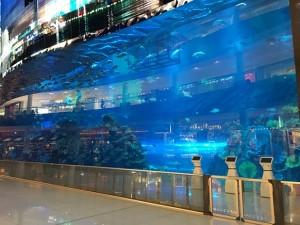 ドバイ・モール水槽 Photo by 横手