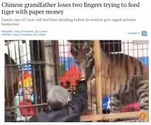 【海外発!Breaking News】「ほら、チップだ」男性がトラの檻に手を突っ込み指を食いちぎられる(中国)