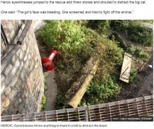 【海外発!Breaking News】女性飼育員、シベリアトラに襲われ重傷 来園者の目の前で(露)