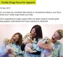 【海外発!Breaking News】「犬をイイコに育てる方法」ついに判明 生後6週までにしておくべきこと(英)