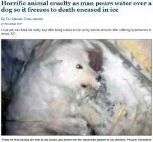 【海外発!Breaking News】犬に水をかけ-32度の屋外に放置 凍死させた飼い主に「処罰を」の声(露)