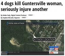 【海外発!Breaking News】犬4頭に襲われ2名が死傷 近隣住民は1年前から不安を口に(米)