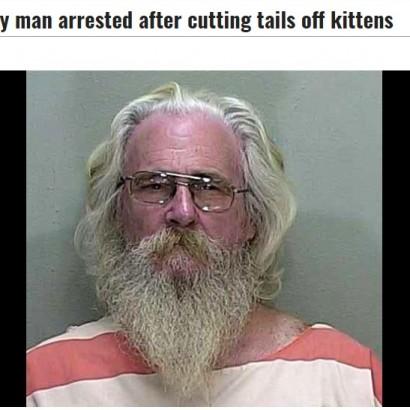 【海外発!Breaking News】動機は恨みか 68歳男、他人の飼いネコ5匹の尻尾を切り落とす(米)