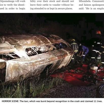 【海外発!Breaking News】ミニバスタクシーが牛3頭と衝突、炎上し乗客11名死亡(南ア)