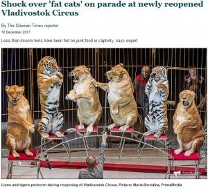 【海外発!Breaking News】肥満ライオンにパフォーマンスさせる露サーカス団に批判殺到