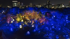 福岡城跡が美しい光のアート空間に