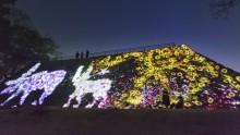 """来場者数2万人突破! 福岡城跡が幻想的な""""光の体験型アート空間""""に 大晦日はカウントダウンも"""