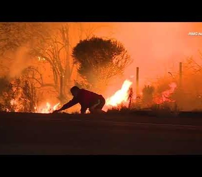 【海外発!Breaking News】米加州の山火事でウサギを救出した男性に批判殺到<動画あり>