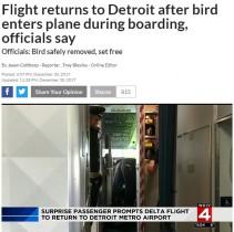 【海外発!Breaking News】コックピットでバサバサ、ウロチョロ…1羽の小鳥にデルタ航空機が引き返す