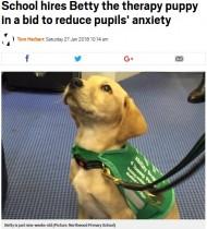 【海外発!Breaking News】小学校でセラピー犬を導入 児童の不安を軽減する役目も(英)