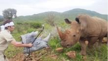【エンタがビタミン♪】狩野英孝、7年前にもアフリカで体張ったロケ 「命の危険」感じていた