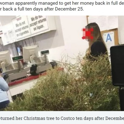 【海外発!Breaking News】コストコへ枯れたクリスマスツリーを持ち込み返金を求めた女性が物議(米)