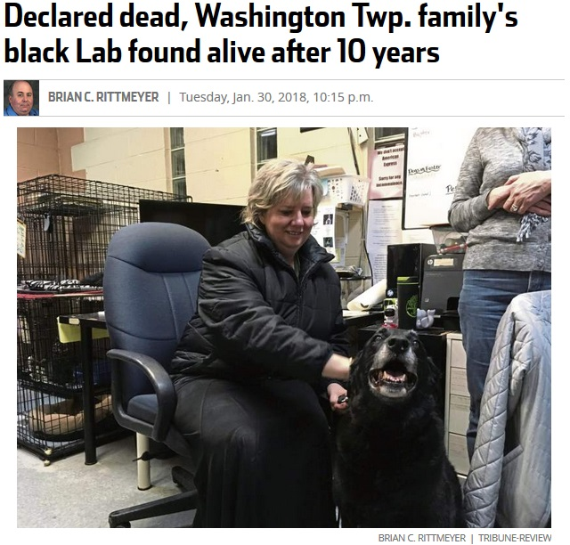 行方不明だった犬、10年ぶりに飼い主と再会(画像は『TribLIVE 2018年1月30日付「Declared dead, Washington Twp. family's black Lab found alive after 10 years」(Brian C.Rittmeyer Tribune-Review)』のスクリーンショット)