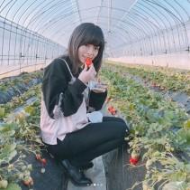 【エンタがビタミン♪】きゃりーぱみゅぱみゅのイチゴ狩りショットに「きゃりーにイチゴ、最強コンビ!」絶賛の声