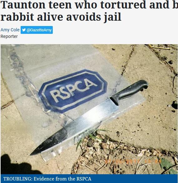 ウサギを惨殺した10代2人、実刑を免れる(画像は『Somerset County Gazette 2018年3月11日付「Taunton teen who tortured and burned pet rabbit alive avoids jail」(Picture: SWNS)』のスクリーンショット)