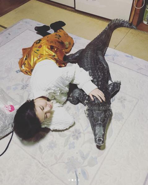 「ワニちゃん」に添い寝する橋本マナミ(画像は『橋本マナミ 2018年3月13日付Instagram「本物です。こたつに入っててかわいい」』のスクリーンショット)