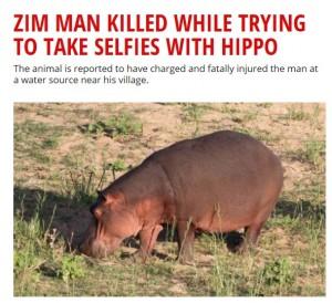 【海外発!Breaking News】カバとセルフィーを撮ろうとした男性、襲われて死亡(ジンバブエ)