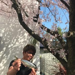 【エンタがビタミン♪】「RIKACO、アジ取りに来い!」 お隣の哀川翔が桜の木の下でドヤ顔