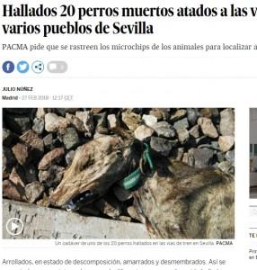 線路脇で死亡した犬(画像は『EL PAÍS 2018年2月27日付「Hallados 20 perros muertos atados a las vías del tren en varios pueblos de Sevilla」(PACMA)』のスクリーンショット)