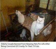 【海外発!Breaking News】73匹の猫を飼育放棄した老夫婦、生涯ペット飼育を禁じられる(英)