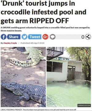 【海外発!Breaking News】酔っ払い旅行者、ワニのいるプールに飛び込み腕を食いちぎられる(ジンバブエ)