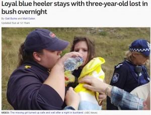 16時間におよぶ捜索後、無事発見されたオーロラちゃん(画像は『ABC News 2018年4月21日付「Loyal blue heeler stays with three-year-old lost in bush overnight」』のスクリーンショット)