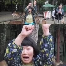 【エンタがビタミン♪】川村エミコ、奈良の鹿に襲われる 洋服をかじられて恐怖で顔が…