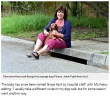 【海外発!Breaking News】散歩中の犬、地下約1.8mに位置する雨水管にいた赤ちゃんを発見(南ア)