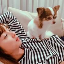 【エンタがビタミン♪】佐々木希、自宅で愛犬とくつろぐ動画にファン「世界の渡部さんが撮影?」