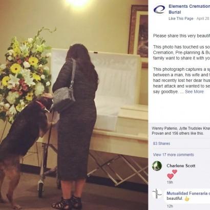 【海外発!Breaking News】亡き飼い主の棺をのぞき込み、最期の別れを告げた犬(カナダ)