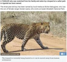 【海外発!Breaking News】サファリスタッフの息子、母親が仕事中にヒョウに襲われ死亡(ウガンダ)