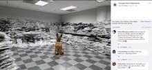 【海外発!Breaking News】警察犬が嗅ぎ当てお手柄 11億円相当の大麻が押収される(米)